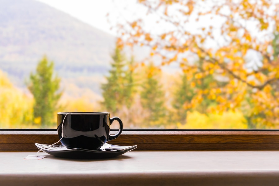 A hot cup of tea in a bay window overlooking fall trees representing your home's fall indoor air quality